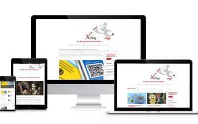 Xblog – ein virtueller Ort des Austausches von und für Menschen mit psychischer Erkrankung