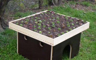 Ein Häuschen für's Grüne: Modellhaus für eine Dachbegrünung aus der Alexianer Klostergärtnerei